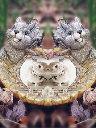 'Rodent Repartee' Short Story Author: Kleio B'wti ©www.wakenshine.com, 2017.
